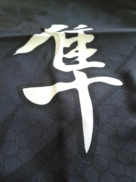 Hayabusa Metaru Performance Shorts Back Detail