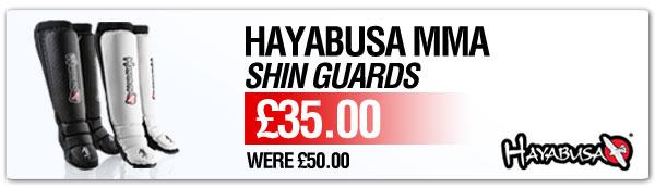 497-Hayabusa-Shinguards-Tab