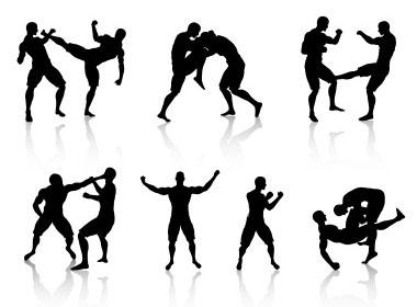 martial art picture